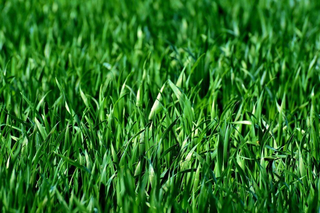人工芝は着替えが超絶楽になるサーフィン便利アイテム