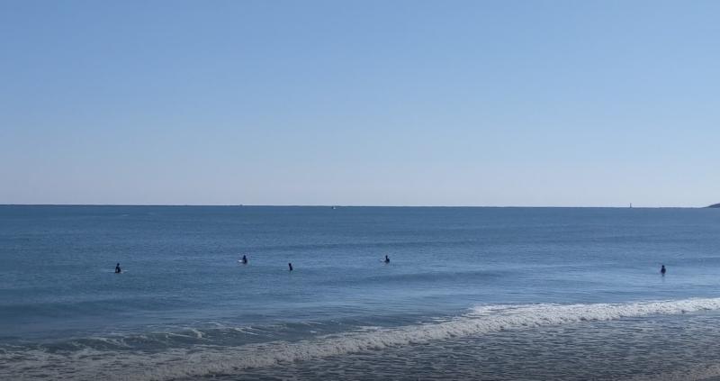 サーフィン日記 (2021.2.3)[66回目]